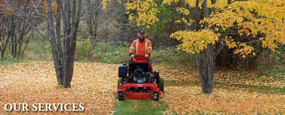 Mulching leaves with a Gravely 1948 Pro Stance